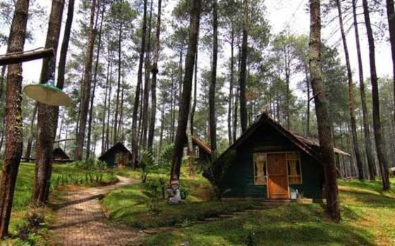 15 tempat wisata outbond murah di bandung paling rekomended semakin rh pinterest com