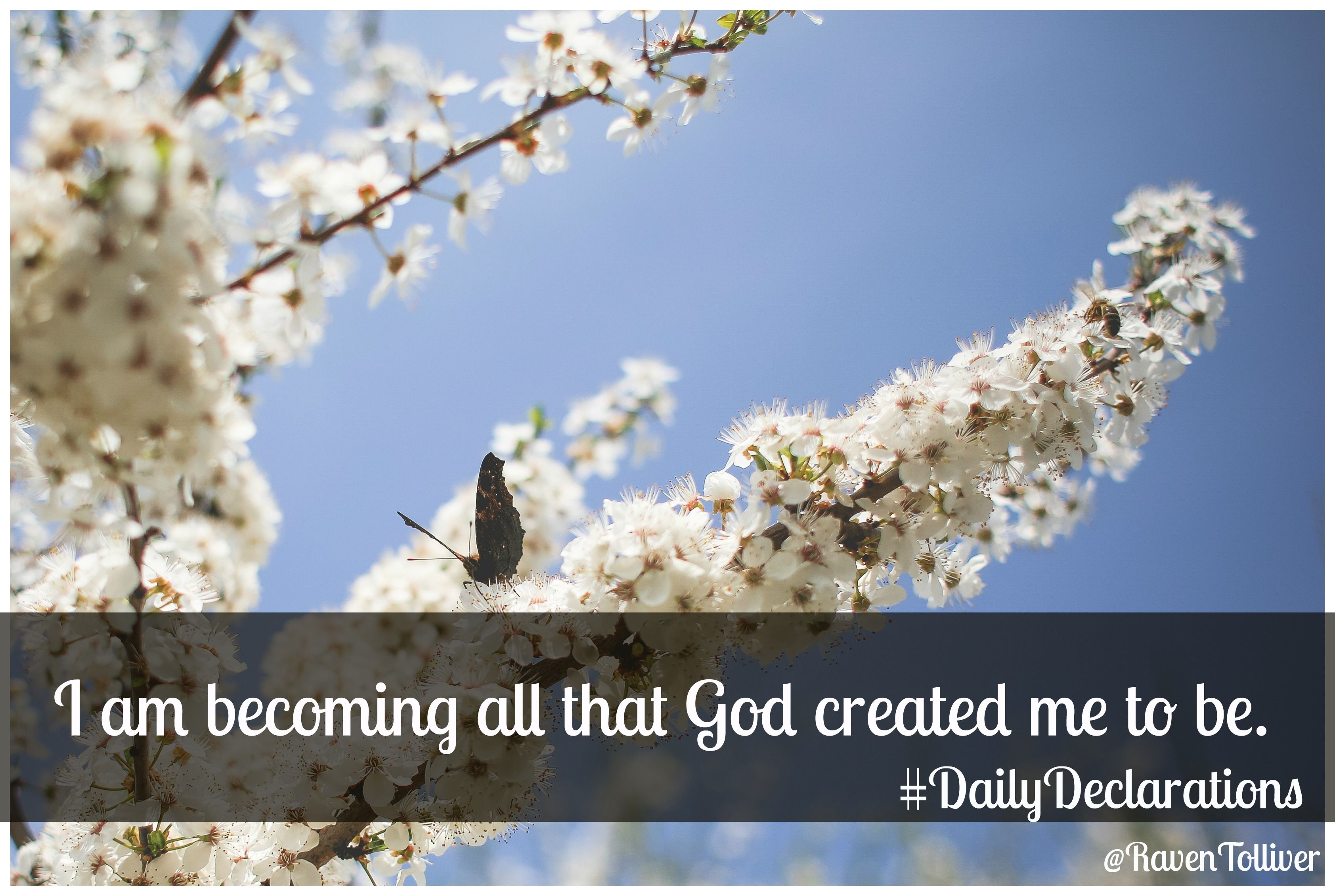 I am becoming all that God created me to be.   ✡In him we were also chosen, having been predestined according to the plan of him who works out everything in conformity with the purpose of his will,-Ephesians1:11 ✡But you are a chosen people, a royal priesthood, a holy nation, God's special possession, that you may declare the praises of him who called you out of darkness into his wonderful light.-1 Peter 2:9 #Scriptures