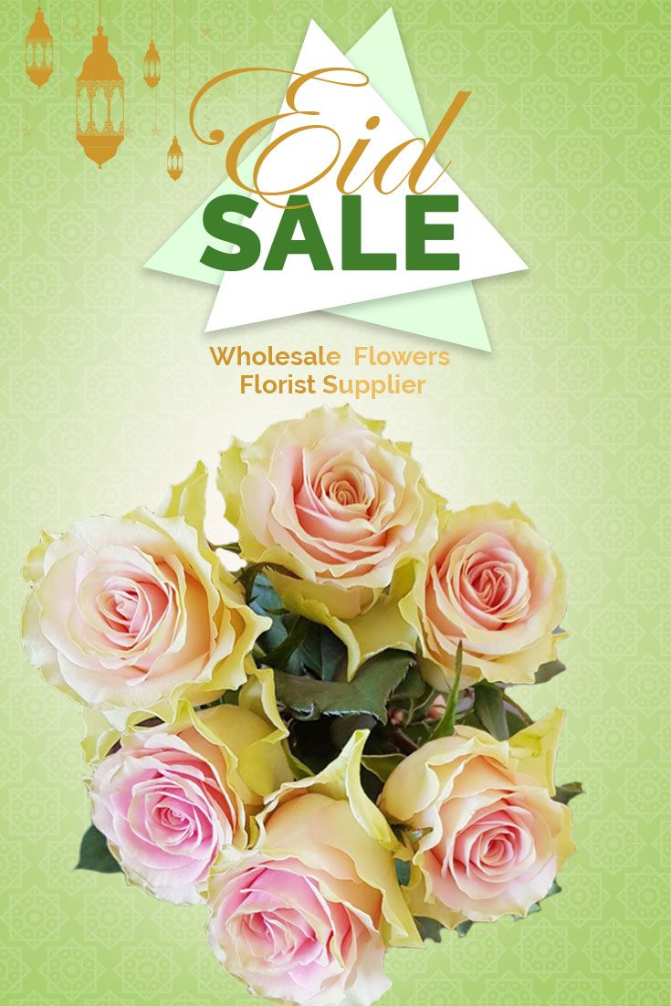 Premium Quality Wholesale Fresh Roses With Eid S Top 10 Wholesale