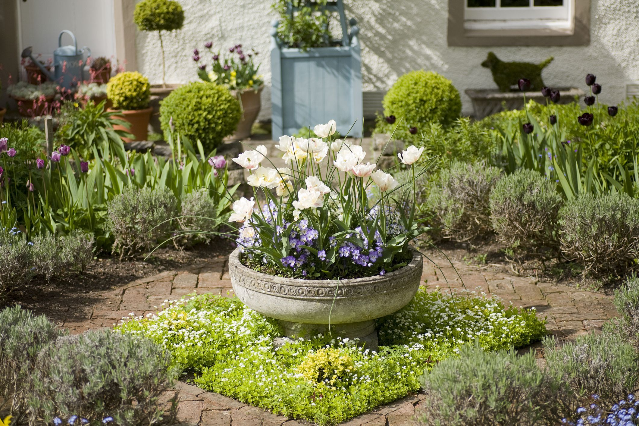 The Rich brothers reveal their top gardening trends for 9