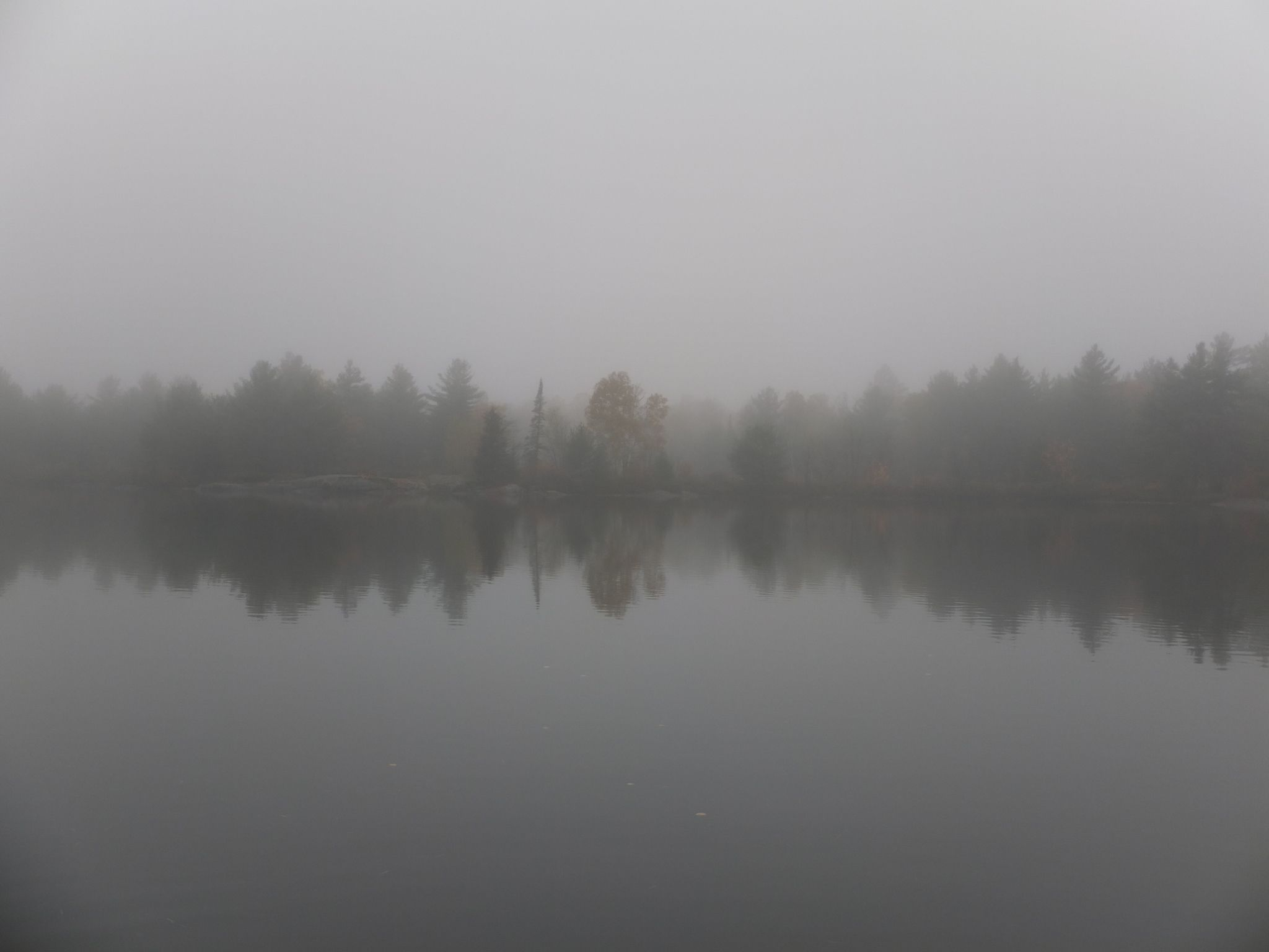 Foggy Autumn Morning ~ Northern Ontario | The way I see it ...