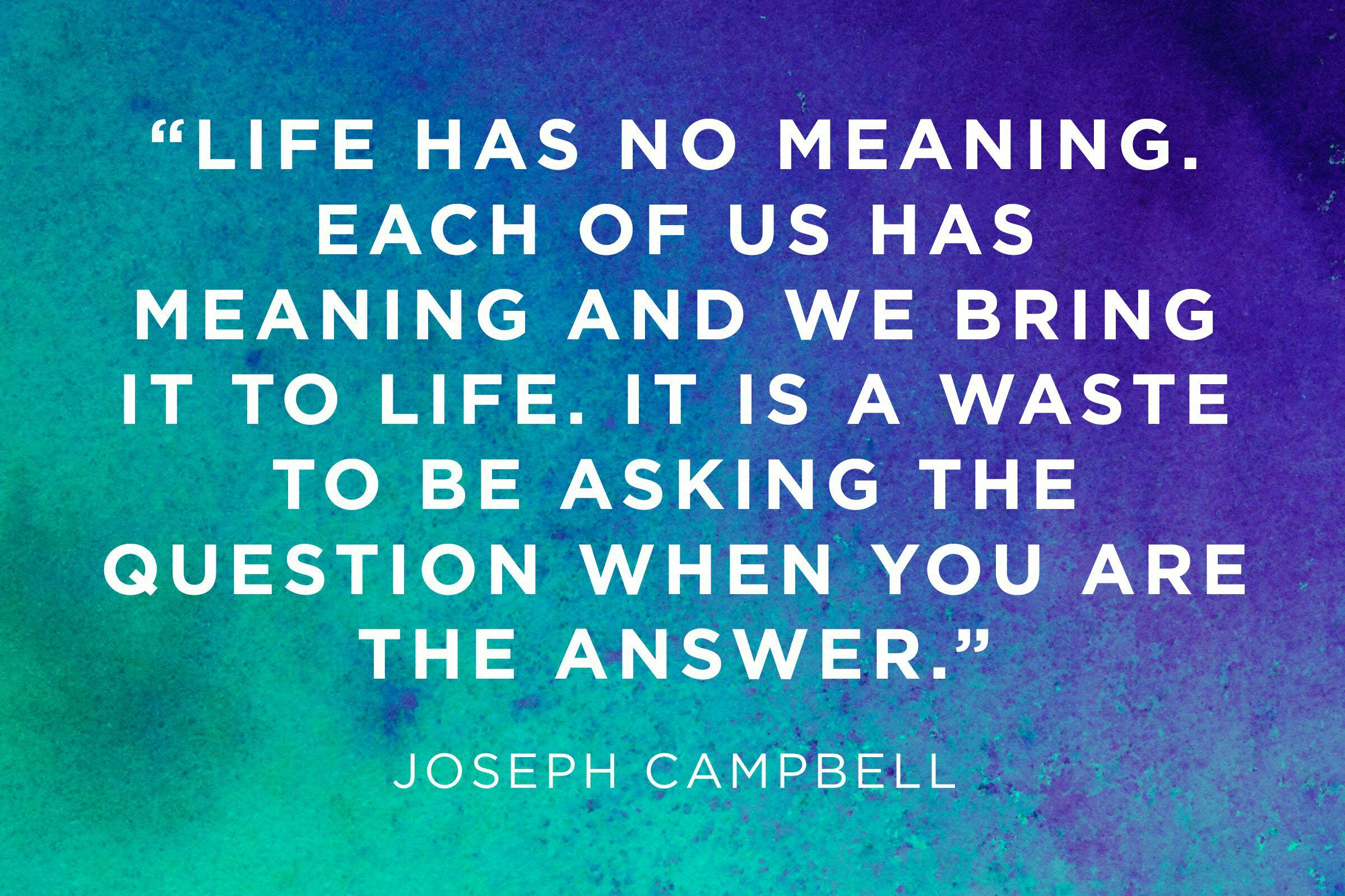 The Meaning of Life (With images)  Life quotes, Good life quotes