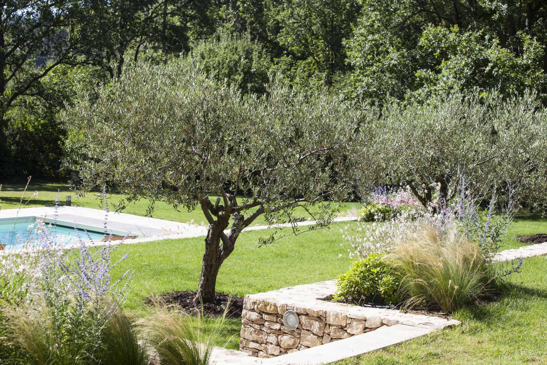 Jeu De Restanques Piscine Amenagement Paysager Terrasse Jardin