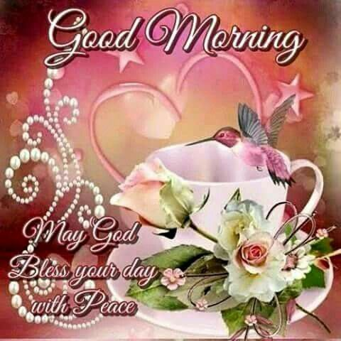 Good morning greeting cards pinterest blessings good morning m4hsunfo Image collections