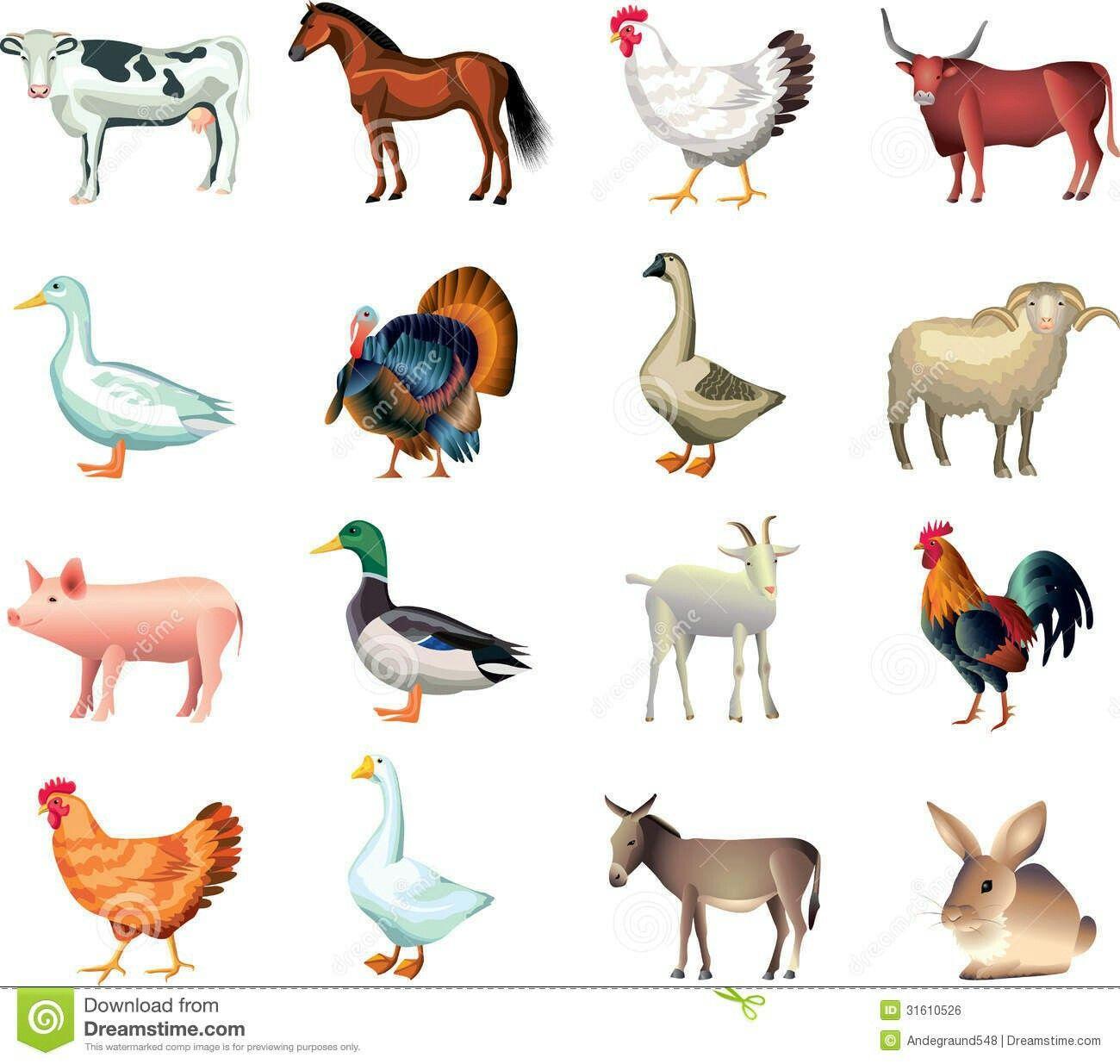 Pin By Sarah Sartori On Paper Arts Animal Clipart Farm Art Stock Images Free