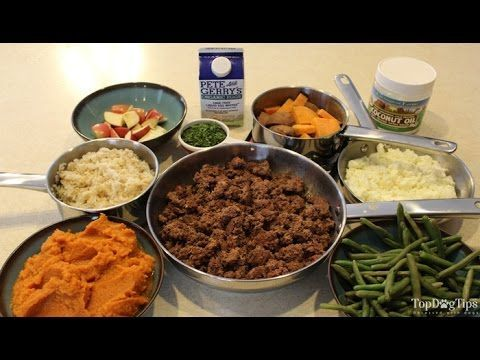 Homemade dog food for kidney disease recipe video quick simple homemade dog food for kidney disease recipe video quick simple forumfinder Image collections