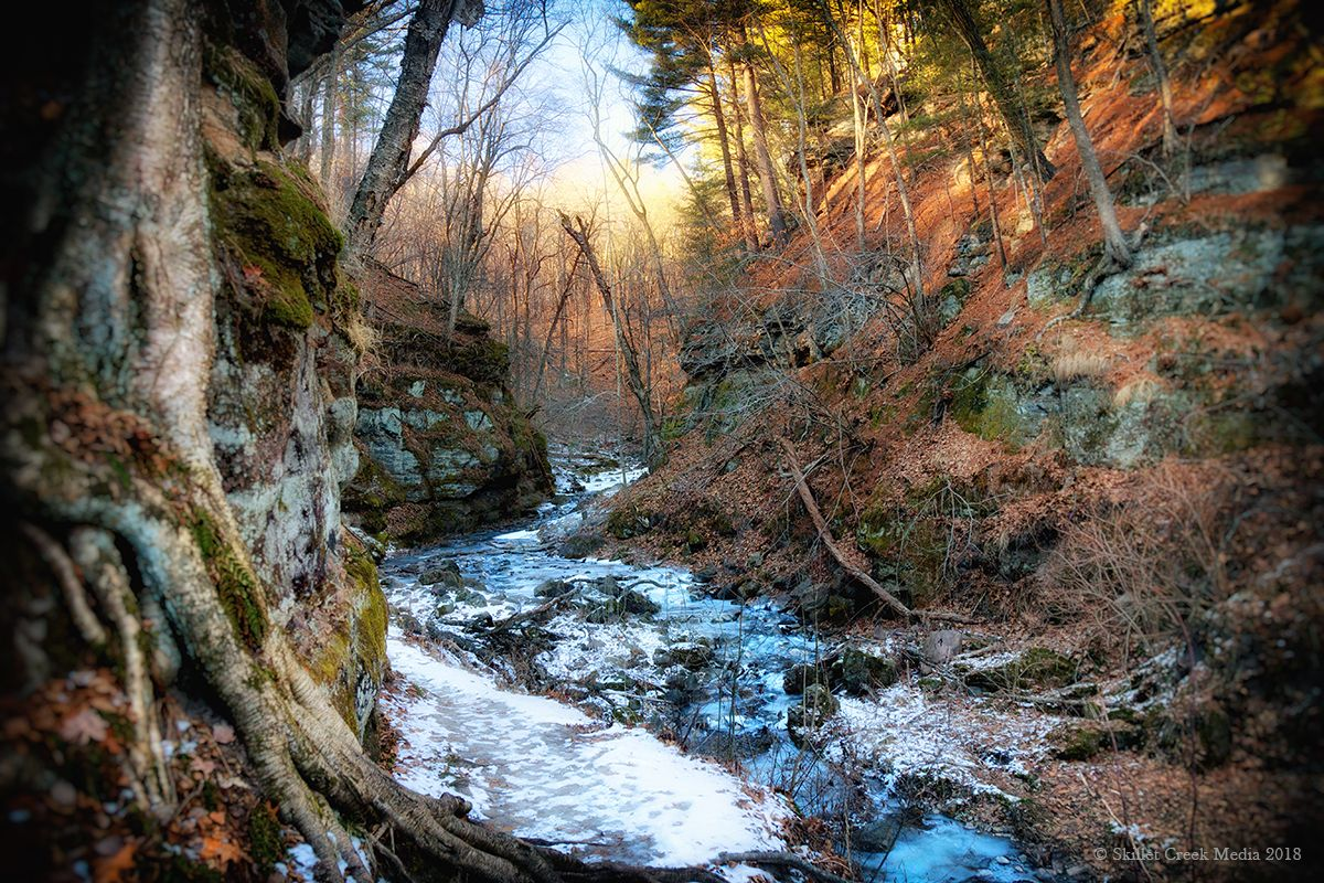Winter in Parfrey's Glen State Natural Area, Baraboo, WI.