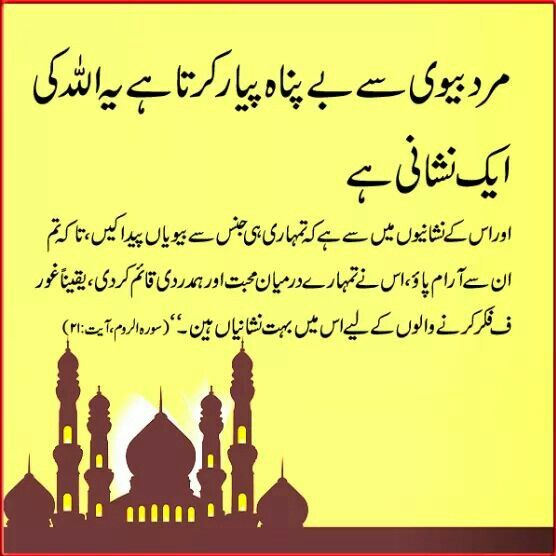 Hazrat Ali Quotes About Husband And Wife  Quotes Of The Day-6210