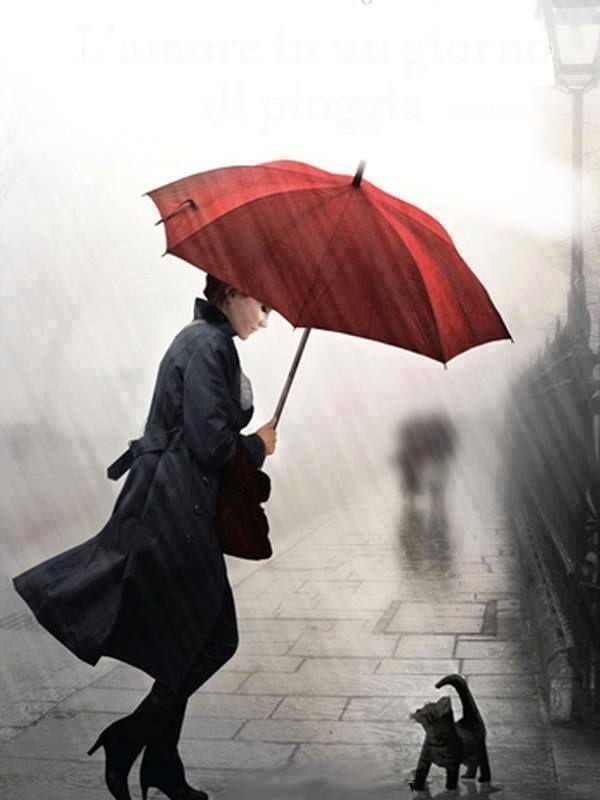 red umbrella in the rain rain pinterest red umbrella rain and