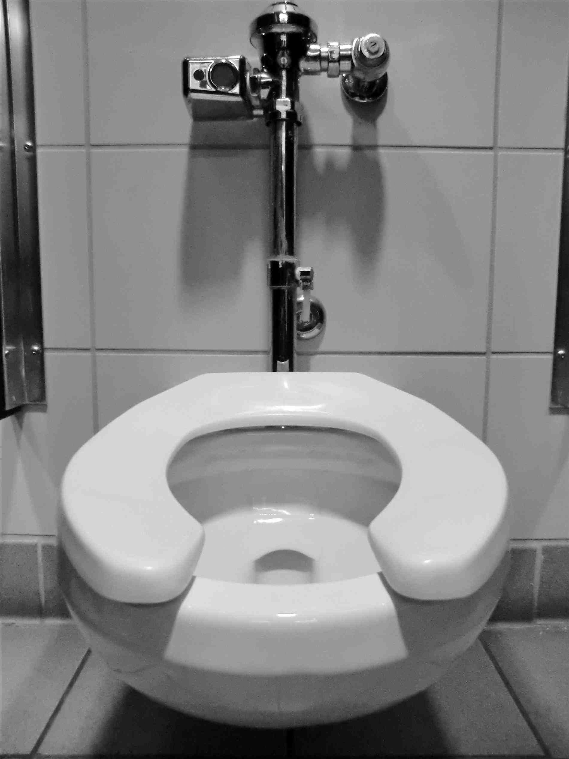 New Post bathroom flusher New Post bathroom