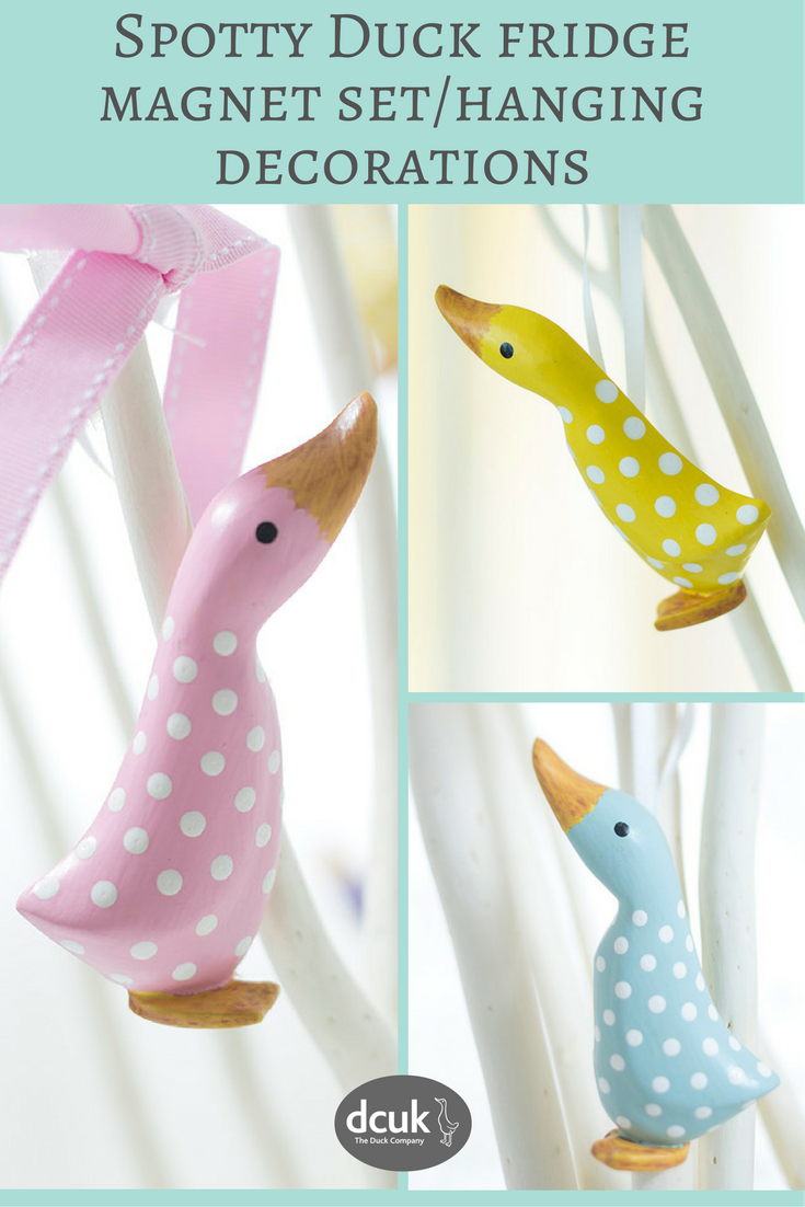 Our spotty duck fridge magnets can also be hung up to make lovely ...