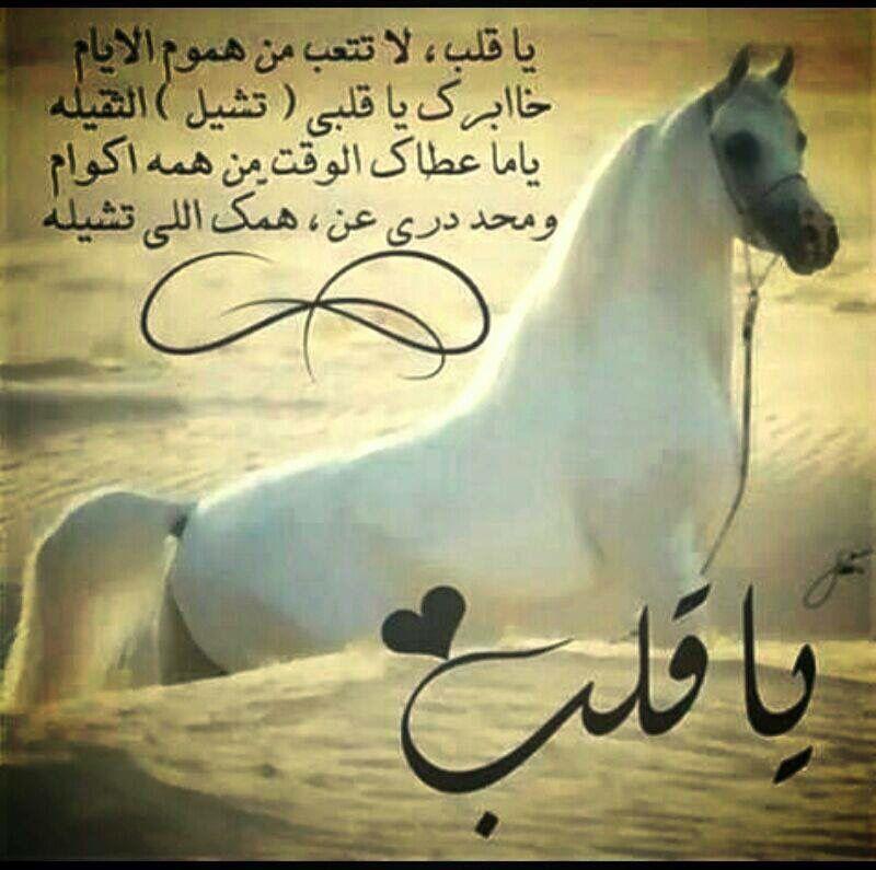 يا قلب Love Words Horses Qoutes