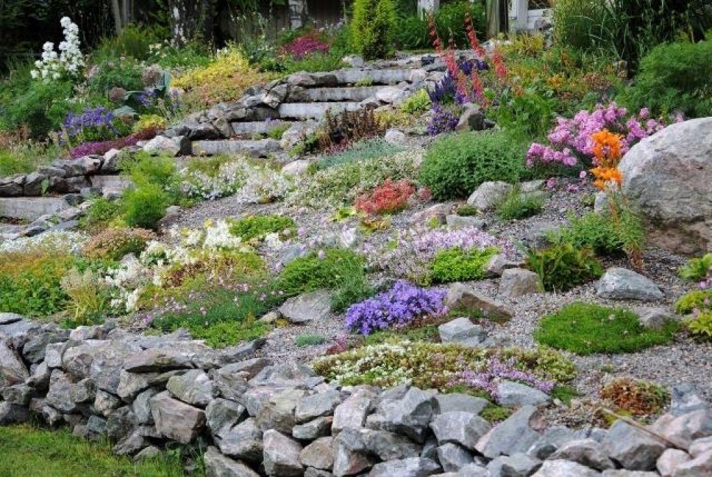 Außergewöhnlich Bildergebnis für alpinum anlegen | Alpinum | Steingarten, Garten &EM_46