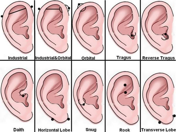 ear piercing diagram- tragus, daith or rook? all 3? Tattooes