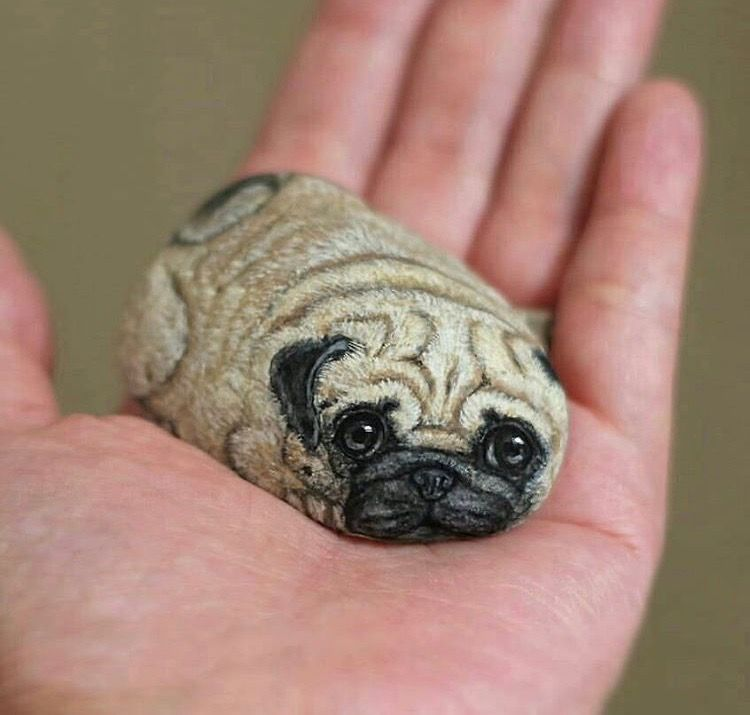 Smallest Pug Ever Rock Painting Tutorial Stone Painting