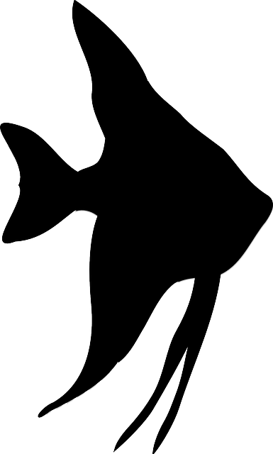 Free Image On Pixabay Angelfish Fish Silhouette Fish Silhouette Silhouette Art Animal Stencil