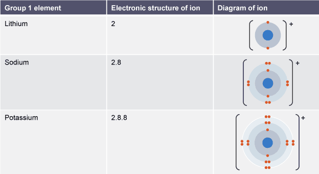 Table showing the electronic structure and atomic diagram for ions the group 1 elements in the periodic table are known as the alkali metals learn more about these elements including lithium sodium and potassium urtaz Choice Image