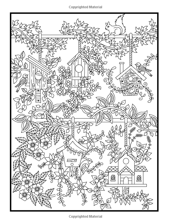 Amazon Hidden Garden An Adult Coloring Book With Secret Forest Animals Enchanted Flower Designs And Fantasy Nature Patterns 9781541002159 Jade
