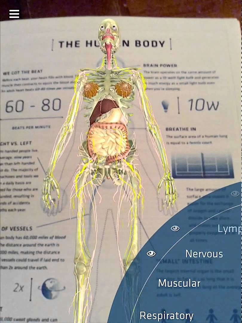 New Update To Daqris Anatomy 4d App The Human Body Anatomy 4d