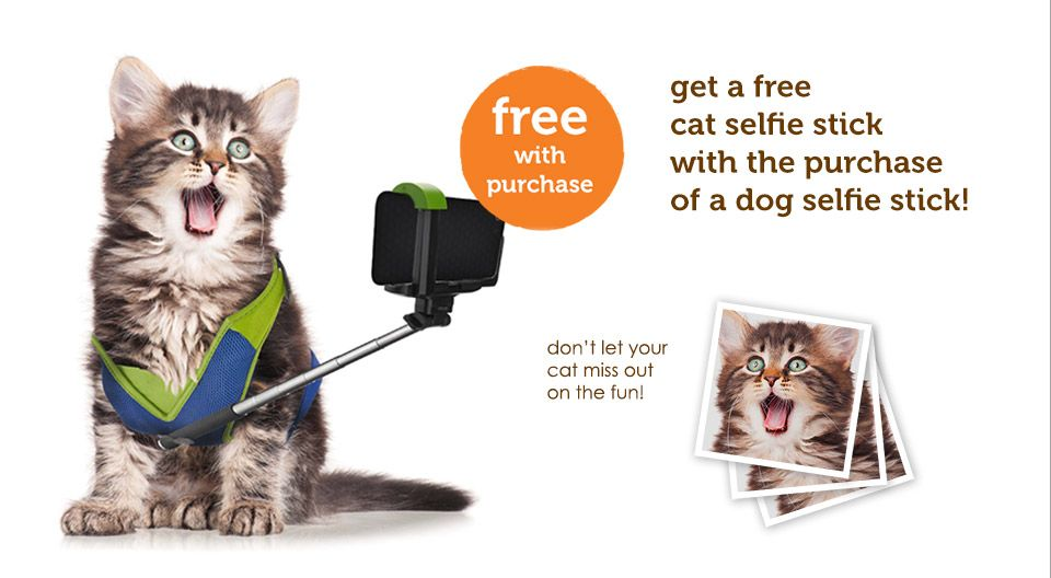 Introducing The Revolutionary Selfie Stick For Pets Cat Selfie Dog Selfie Pets