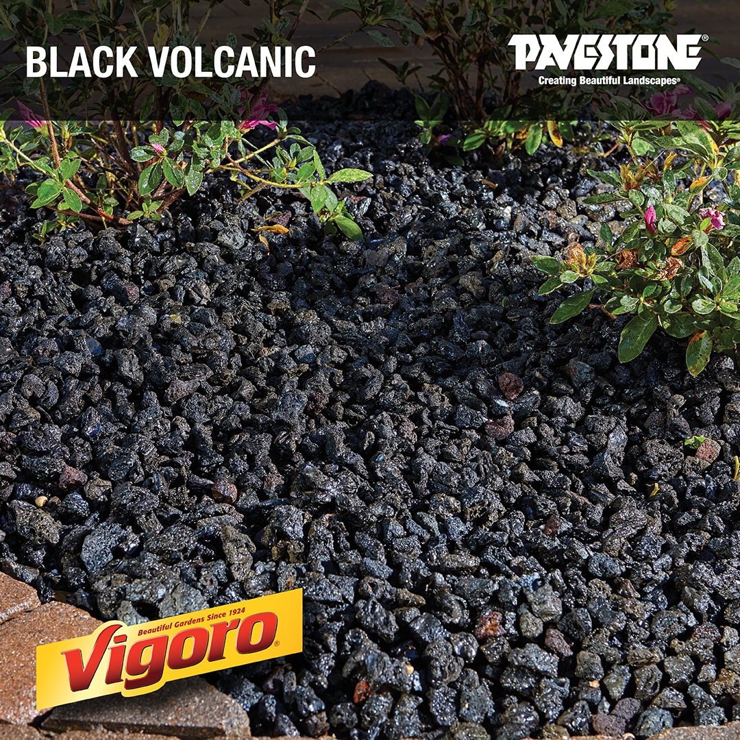 Use This Gorgeous Black Rock To Accent Planters Walkways Creative Landscapes And Even Fire Pits Landscaping With Rocks Landscaping Rock Lava Rock Landscape