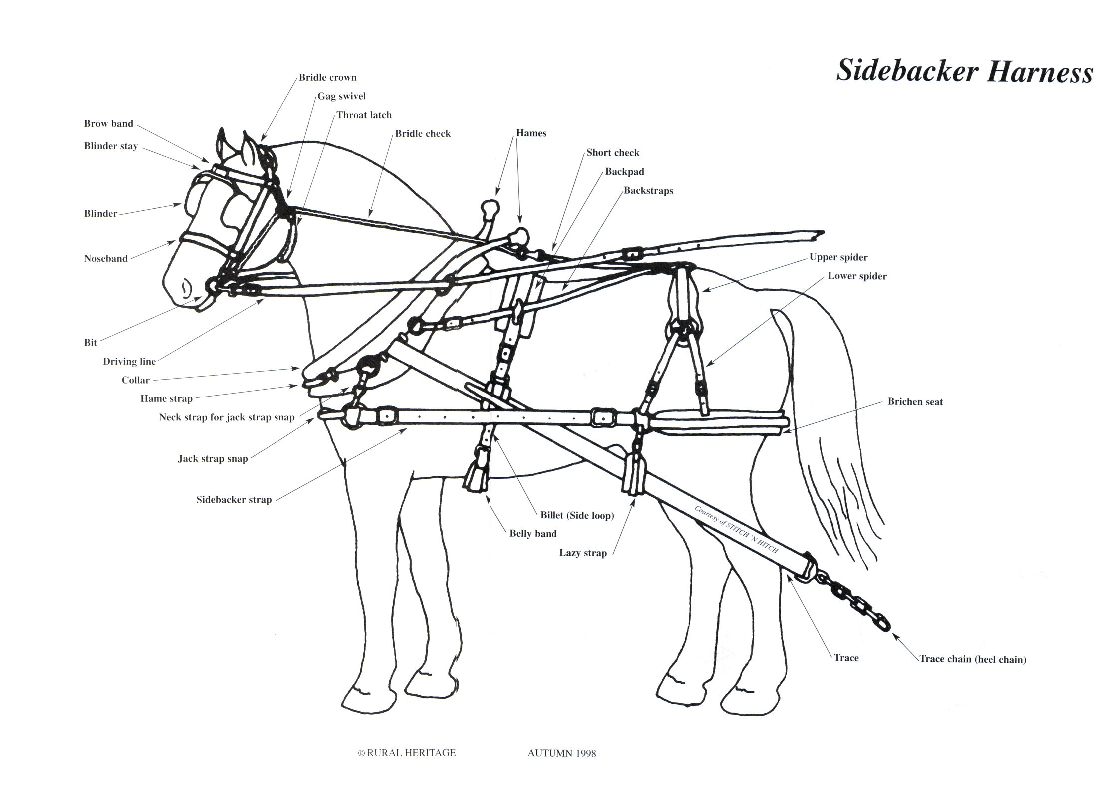 Sidebacker Harness Illustrations With Images