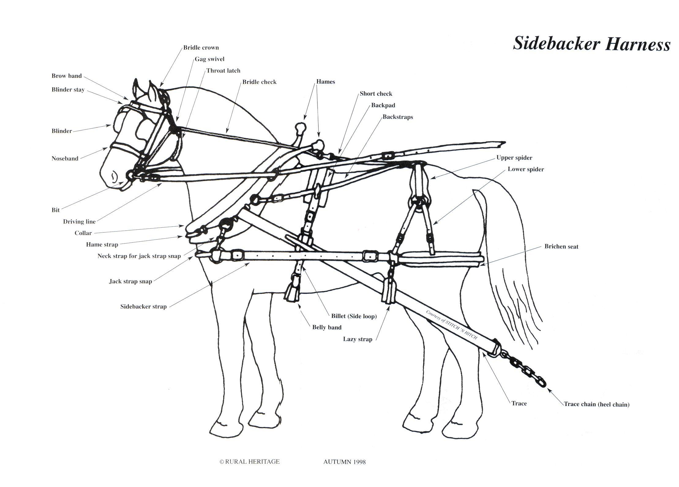Sidebacker Harness Illustrations