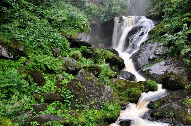 Cascadas de triberg
