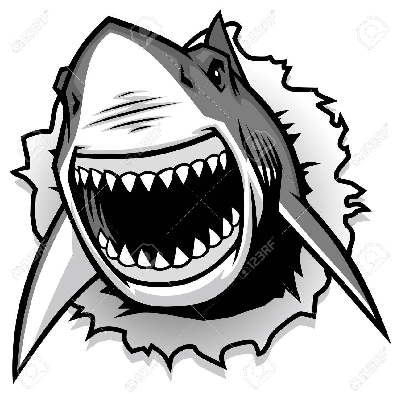Great White Shark Illustration Ad White Great Illustration Shark Ilustracao Tubarao Arte De Tubarao Tubarao Branco