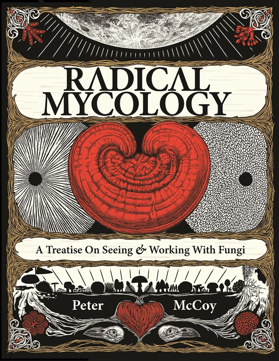 Radical mycology a treatise on seeing working with fungi books radical mycology a treatise on seeing working with fungi fandeluxe Image collections