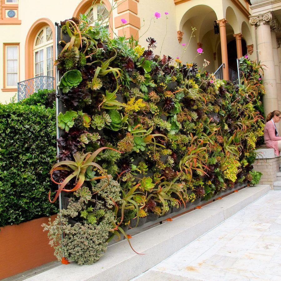 Behold, the 35th Annual San Francisco Decorator Showcase | Gardens ...