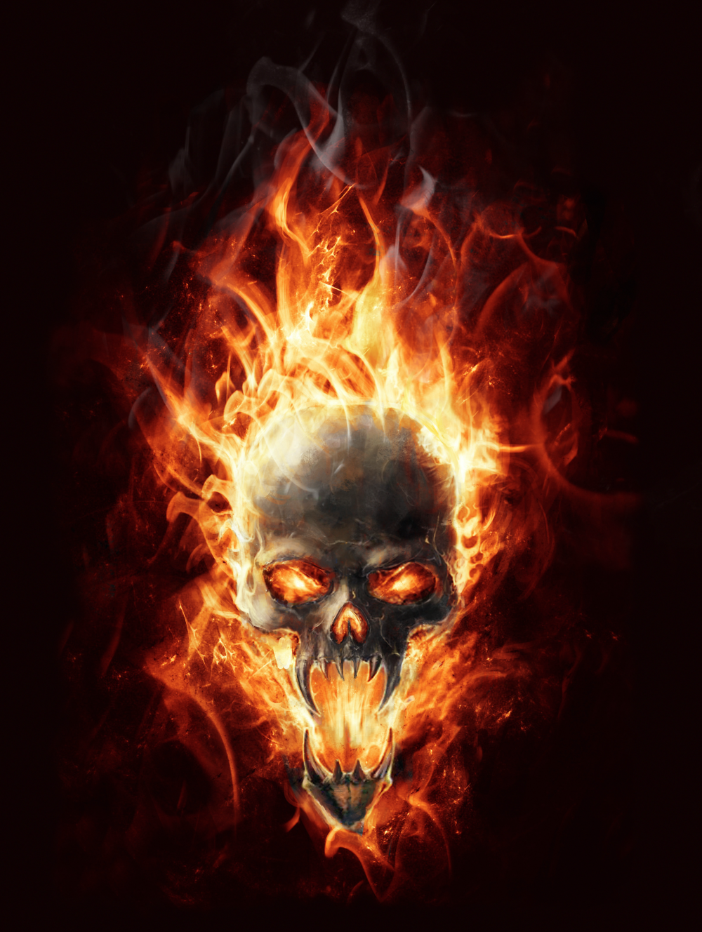 Flaming Skull Door Wrap Rm Wraps In 2020 Skull Wallpaper Skull Artwork Skull Pictures