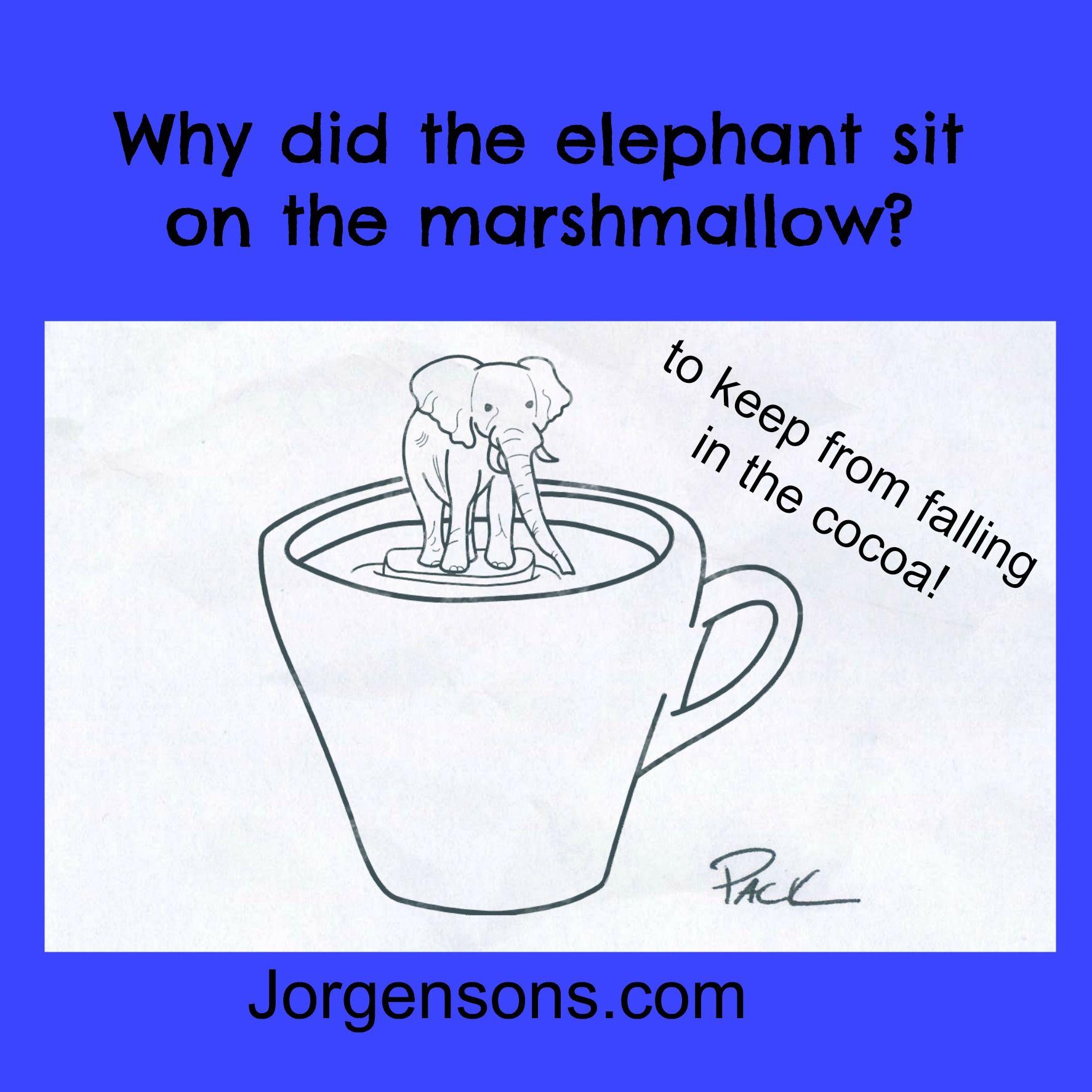 Pin On Elephant Jokes