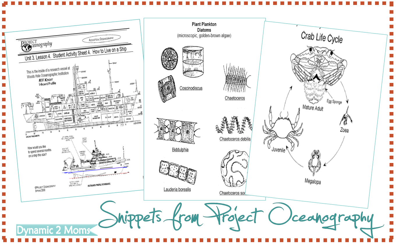 Free Printables From Project Oceanography