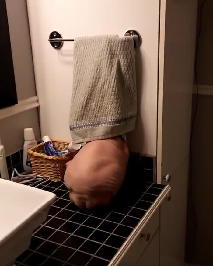 Ideal Naked Hiding From Boss Video Pictures