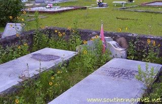 Southern Graves: Flashback Friday: Sardis Sunflowers