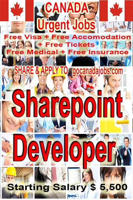 Sharepoint Developer Jobs Career Hiring In Canada Flexible