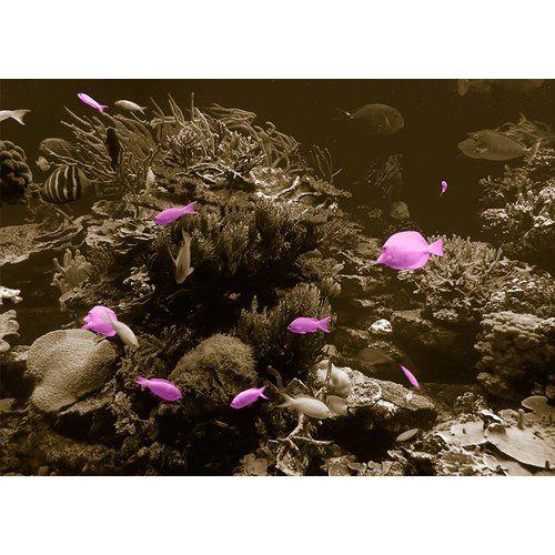 Photo of East Urban Home Glasbild Animals Underwater, Fotodruck in Lila | Wayfair.de