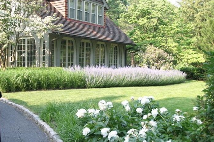 Siepi Da Giardino Fiorite : Siepi fiorite per abitare giardino siepi e giardinaggio