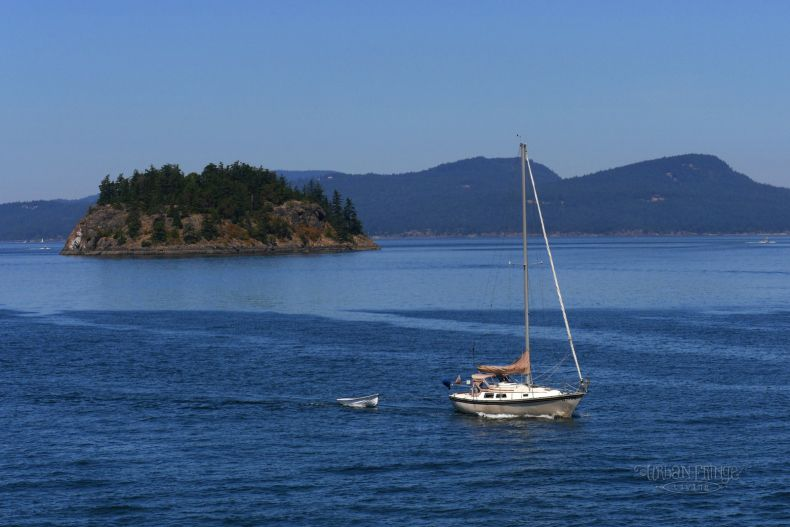 Ride the Ferry to Friday Harbor on San Juan Island