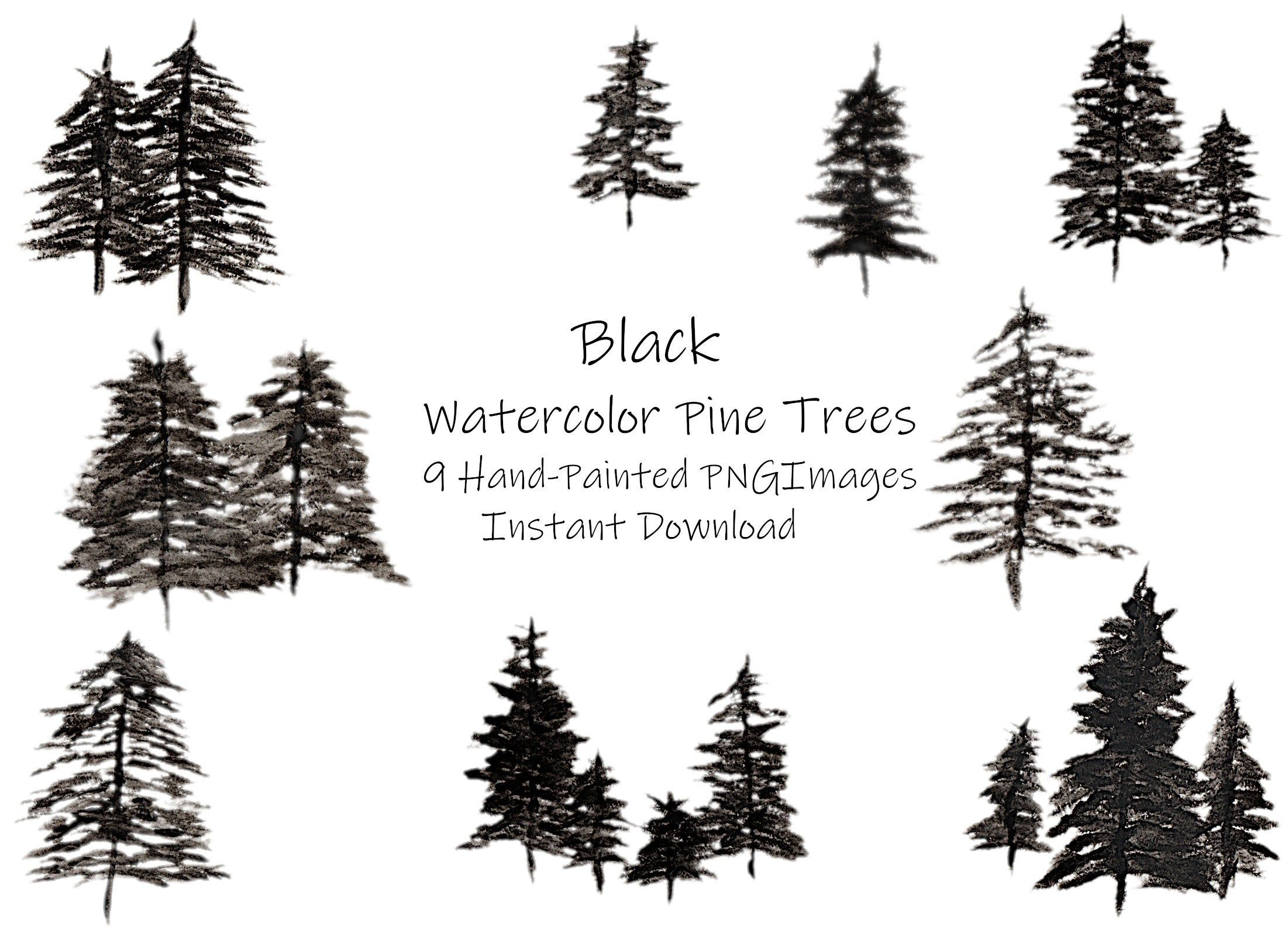 Watercolor Pine Clipart Conifers Pine Trees Png Instant Etsy In 2021 Pine Tree Silhouette Evergreen Tree Tattoo Black Pine Tree