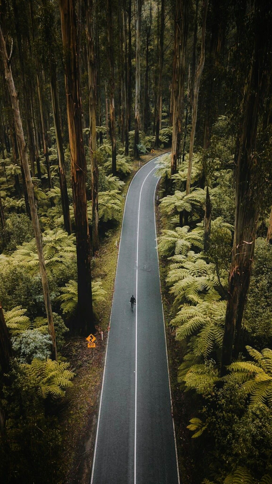 Green Highway Aerialview Verticallandscape Aerialphotography Aerial Photography Drone Vertical Landscape Nature Photography