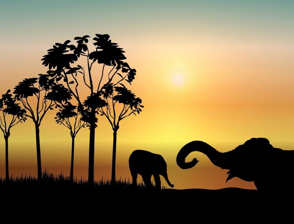 African Wild Animal Vinyl Wall Decal African Animal Safari Night Elephant  Wall Sticker Living Room Decorative