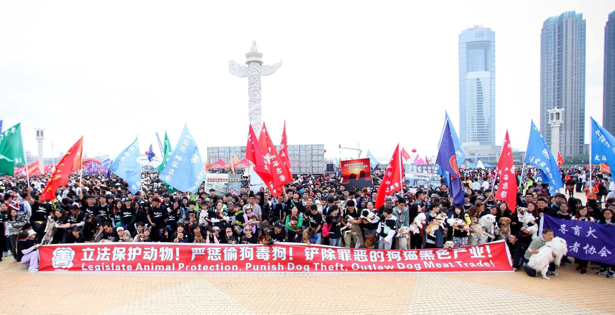 Chinese Citizens Rally Together to End Meat Trade