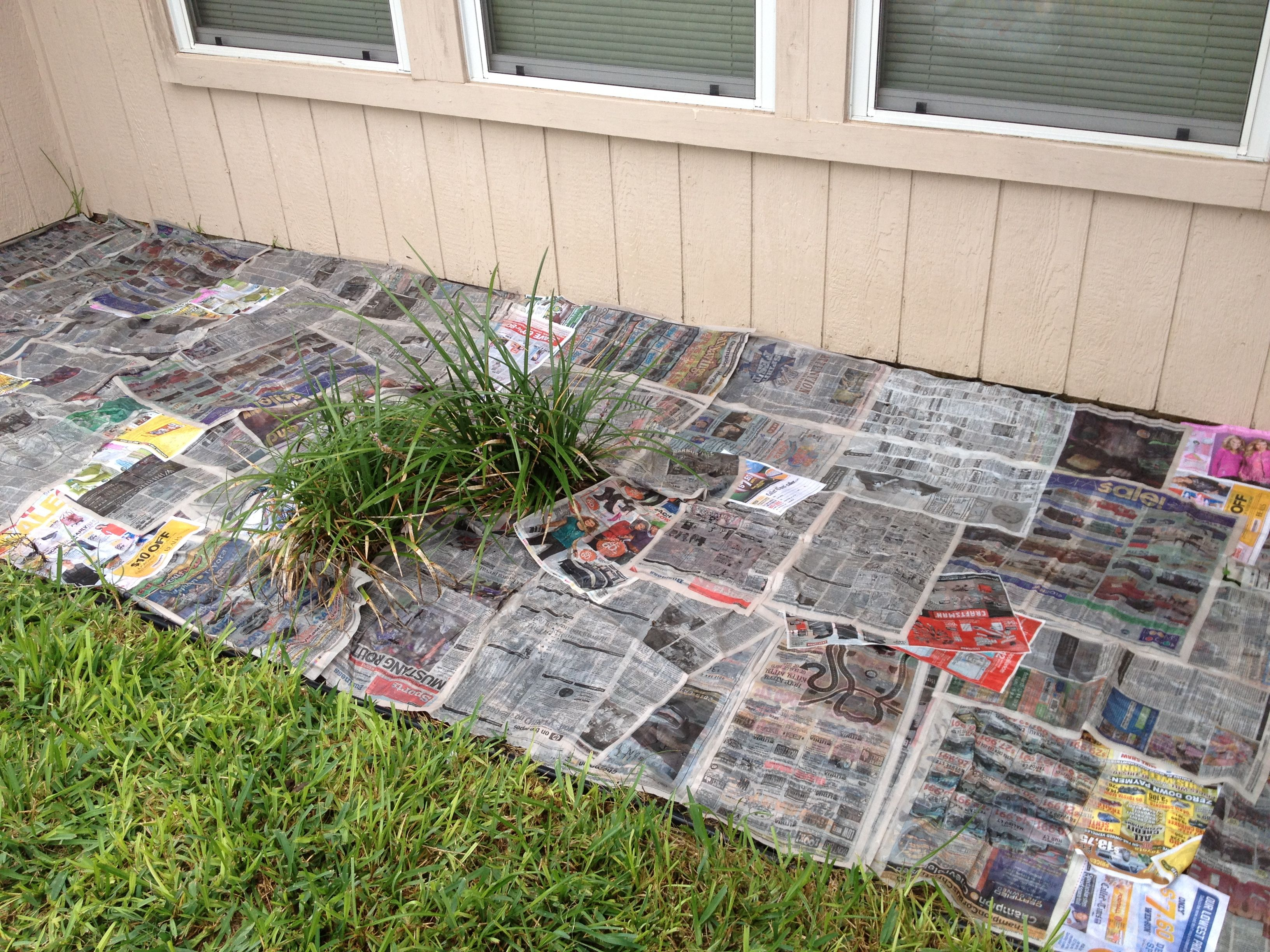 Cheapest and most effective way to keep weeds out of the