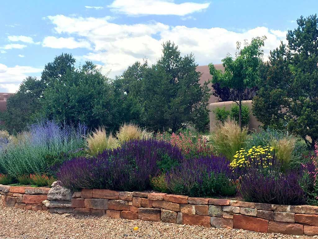 Xeriscaping | McCumber Fine Gardens | Xeriscape plants ...