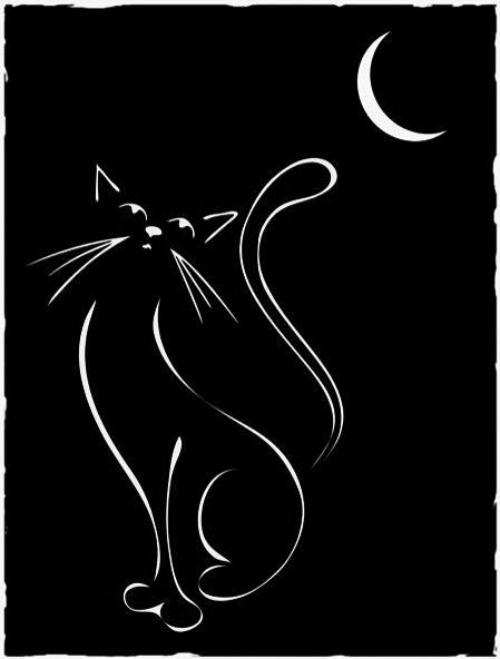 Gato Blanco Delineado Sobre Fondo Negro Gatos Ilustraciones