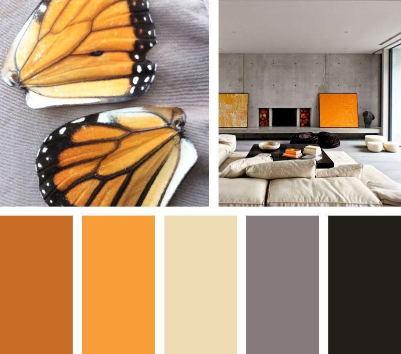 Pin En Paletas De Colores