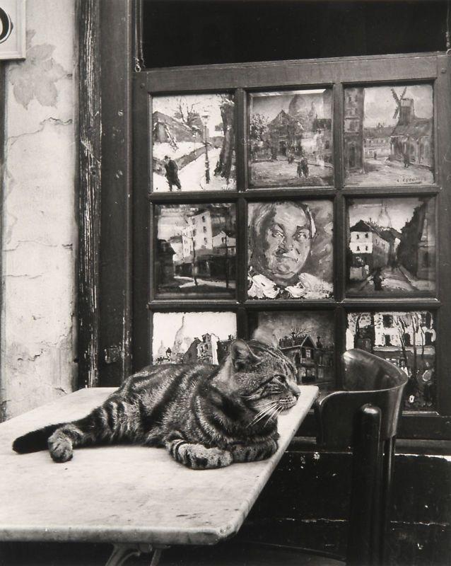 """luzfosca: """" Izis Bidermanas """"Bar Eugene, place du."""" (cat), 1949 Also """""""
