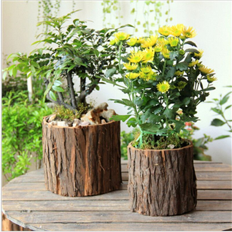 Forest Bark Style Natural Wooden Pots For Small Plants \u2013 Sixth Spark & Forest Bark Style Natural Wooden Pots For Small Plants | Wooden ...